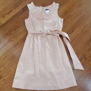 J. Crew size 8 dress NWT